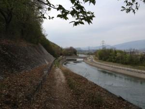 Colline di Pastrengo - Sentiero nel bosco - Seconda parte