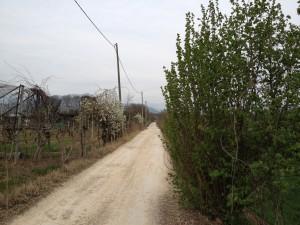 Ritorno verso Sant'Ambrogio