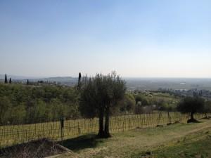 Rientro verso Gargagnago - Scorcio Valpolicella - Seconda parte
