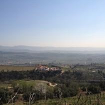 Panorama dopo la Pineta di Gargagnago