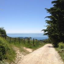 Monte Belpo - Discesa
