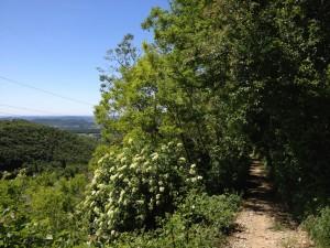 Monte Belpo - Attacco dal fianco destro
