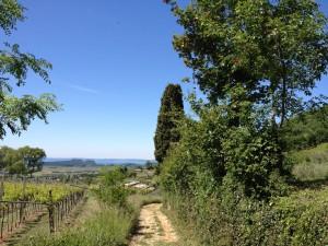 Monte Belpo - Avvicinamento