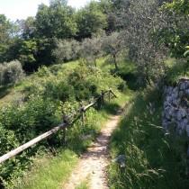 Percorso del Pellegrino - sopra Torri