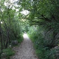 Valpolicella Valdadige - Monte discesa dal Forte - Relax