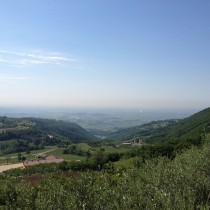 Valpolicella Valdadige - Mazzurega